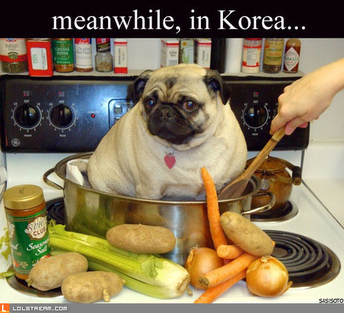 Meanwhile, in Korea...