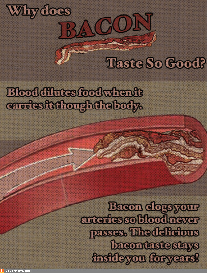Why does Bacon taste so good?