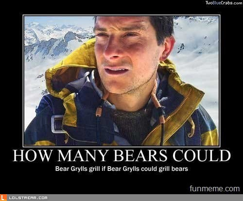 How Many Bears...