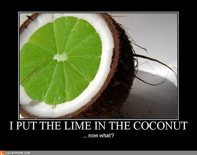 I Put The Lime In The Coconut