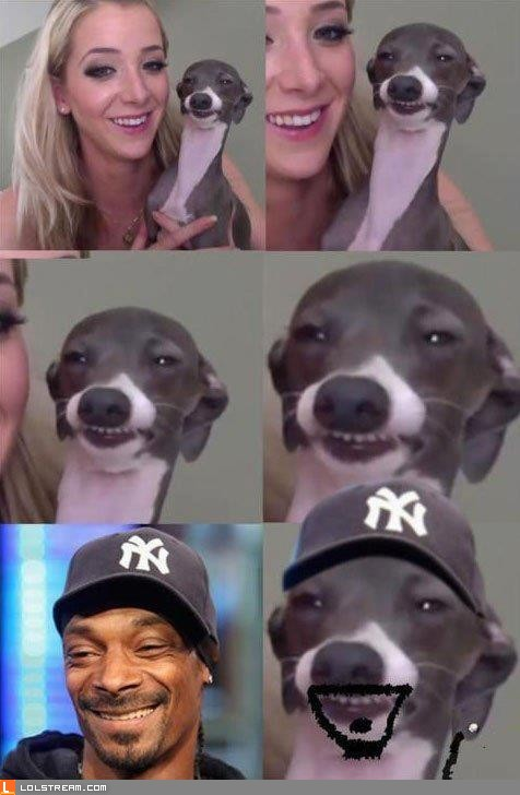 Snoop Dawg