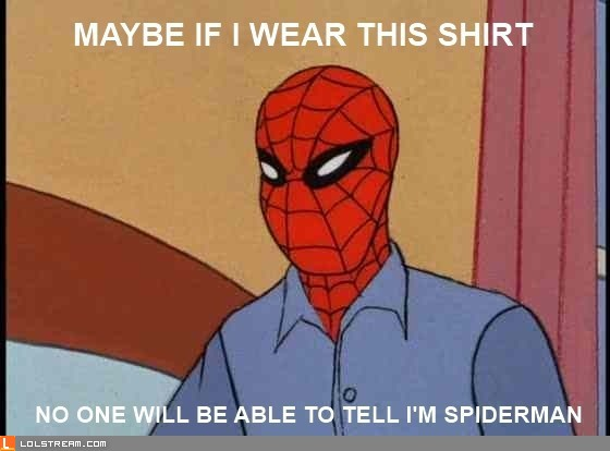 Spiderman disguise