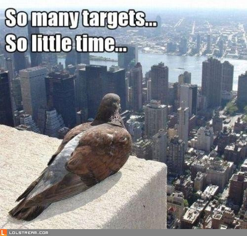 So many targets...
