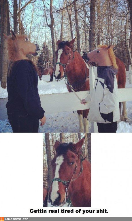 Horsing Around