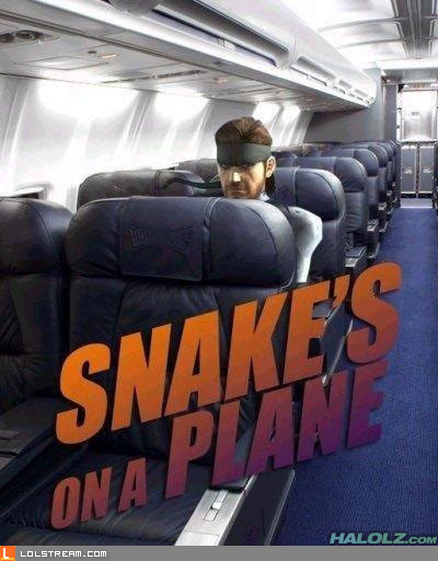 Snake&#039;s On A Plane