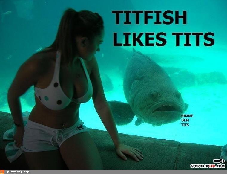 Titfish