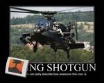 Riding Shotgun