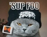 'Sup Foo