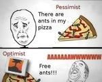 Ants On My Pizza