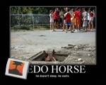 Pedo Horse