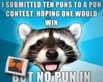 I submitted ten puns to a pun contest