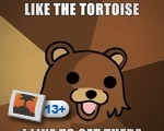 Like the tortoise....